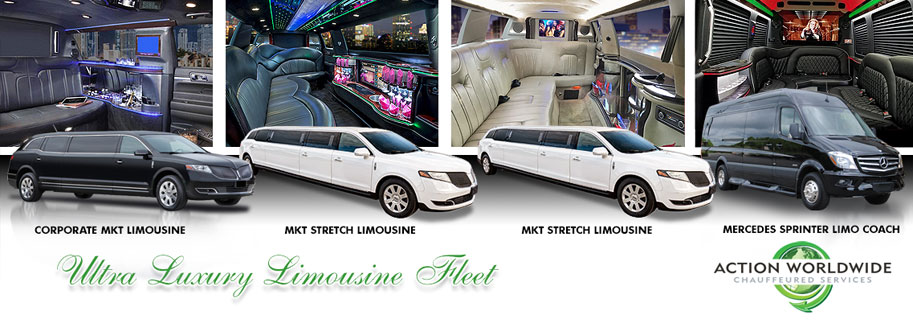Dawsonville Limo Services