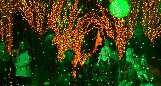 magical nights of lights at lake lanier islands holiday